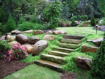 4200 Gambar Bangku Taman Sederhana Terbaru