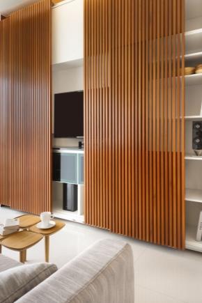 Garderobe Met Een Tv Nis 49 Fotos Model Met Een