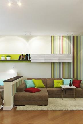 डिज़ाइन लिविंग रूम-बेडरूम 17 वर्ग मीटर मीटर