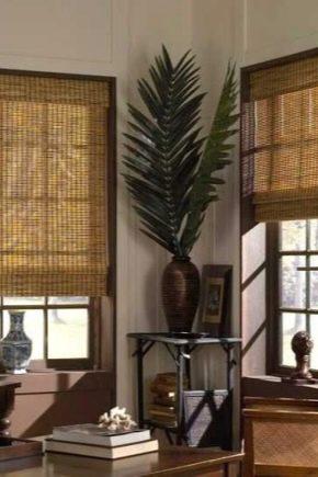 Tende In Midollino A Rullo.Tende Di Bambu 58 Foto Come Installare Le Persiane A Rullo Sulle Finestre Dal Sole Le Idee All Interno Del Balcone E Del Corridoio I Meccanismi E Le Revisioni