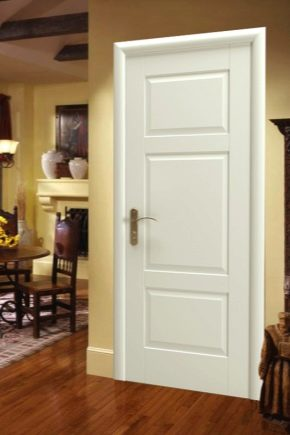 Doors Garant: the pros and cons