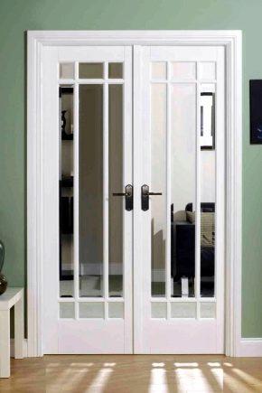 डबल ग्लेज़िंग वाले दरवाजे