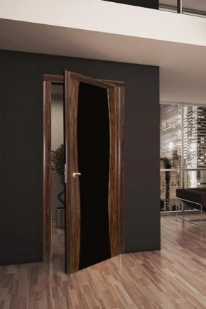 How to choose the door under the laminate?