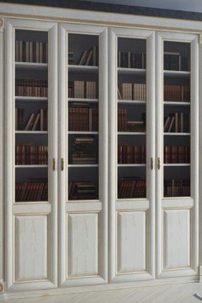 Bibliothèque avec portes en verre: choix et design