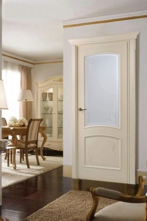Products of the company Alexandria doors