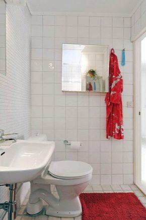 Conception de toilettes à Khrouchtchev: idées de design