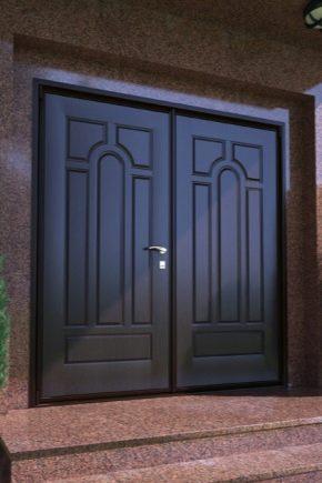 Dubbel metall ingångsdörrar