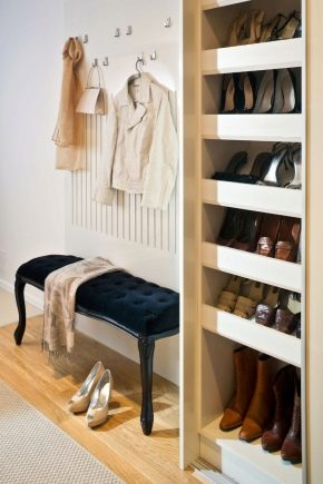 How to choose a hanger and a shoebox in the hallway?