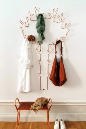 Metal wall hangers in the hall: features of choice