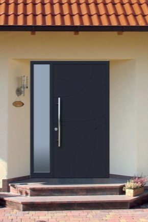 Steel doors: see and features