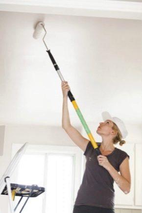 Akrylfärger för väggar och tak: egenskaper av val