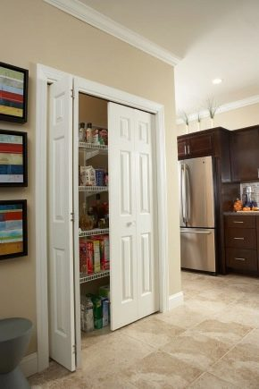 Doors to the pantry: standard and non-standard options