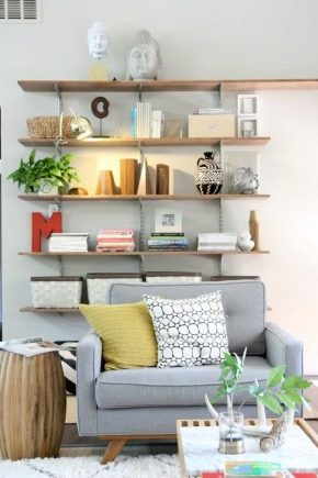 Shelves in the living room: modern design and practicality