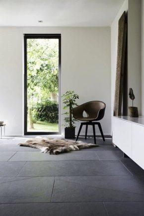 Golv i inredningen av lägenheten: kombination med dörrar, väggar och möbler