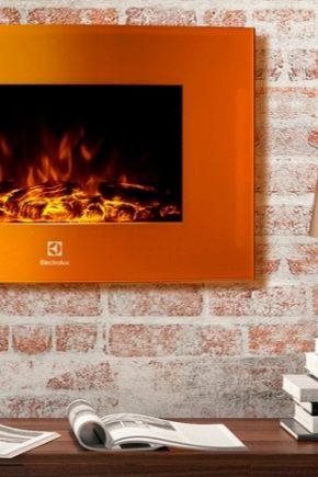 Elektrisk flammaffekt 3D-spis: variationer och installation