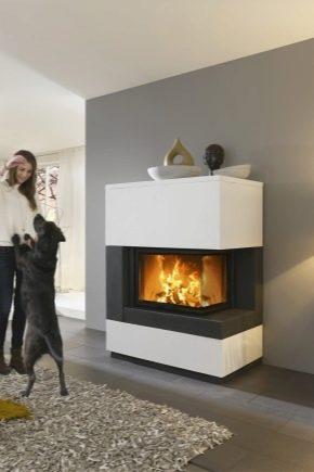 Moderna eldstäder i inredningen av lägenheten och privata hus