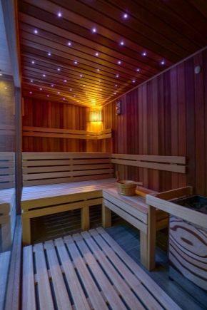 Лампи за баня в парната баня: критериите за подбор