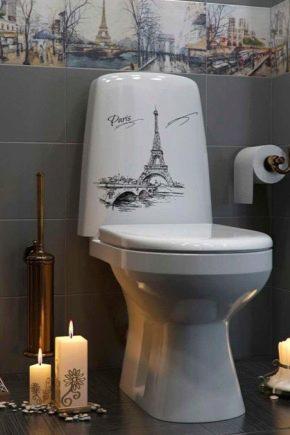 Porcelana lub fajans: co jest najlepsze dla toalety?