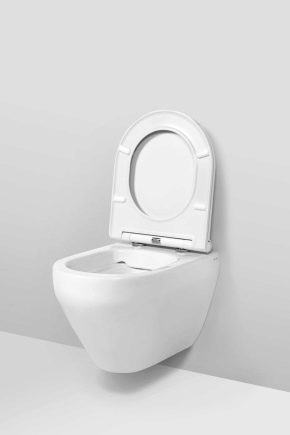 Anläggningar för AM.RM toalettskålar: grunderna i modern stil