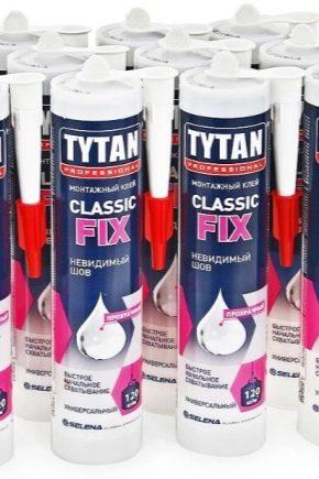 Tytan Transparent Adhesive: Caractéristiques et applications