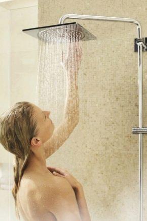 Regndusch för badrum med mixer: funktioner och urvalskriterier