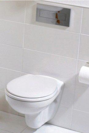 Toaletter Geberit: typer och deras egenskaper