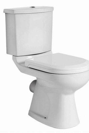Toaletter Jika: egenskaper och populära modeller