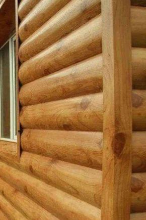 Block house per l'esterno della casa: le sottigliezze del rivestimento della facciata