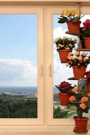 Comment choisir une étagère pour les fleurs sur le rebord de la fenêtre?