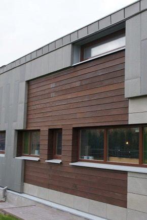 Порцеланови плочки за фасадата: какво да се вземе предвид при избора?