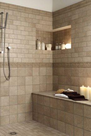 Väggplattor i badrummet: ursprungliga idéer i inredning