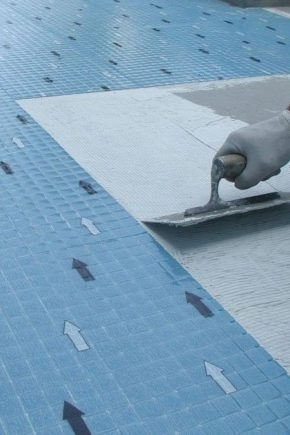 Tile adhesive Litokol K55: properties and features of the application