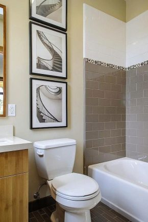 Laying tiles in the bathroom: design ideas