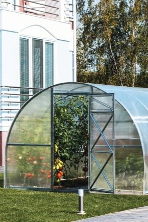 Types and stages of construction of greenhouses