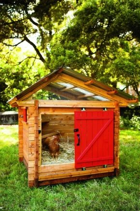 How to build a chicken coop for 10 chickens?