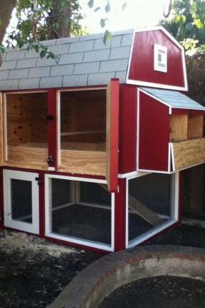 Poulailler sur 20 poulets: projets, construction et aménagement