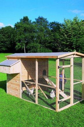 ग्रीष्मकालीन चिकन कॉप: चित्र और निर्माण प्रक्रिया