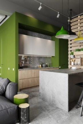 Cucina-soggiorno di 15 metri quadrati. m (50 foto): interior design ...