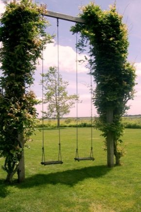 Tips on choosing a swing for adults