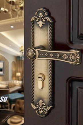 Door handles on the bar: types and tips for choosing
