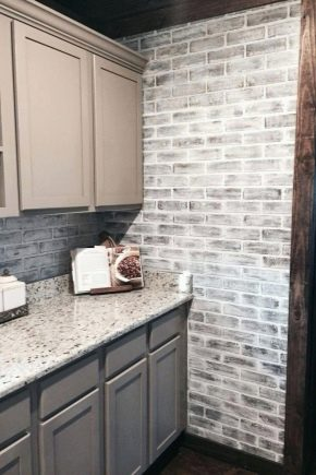 Gray brick: features, types and scope