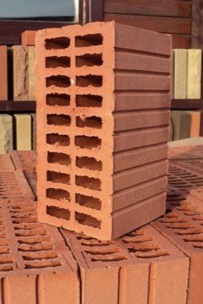 Cărămidă din cărămidă: tipuri și caracteristici tehnice