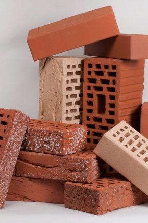 How many bricks in 1 cu. m?