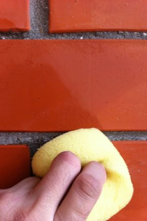 Subtleties of the process of cleaning bricks