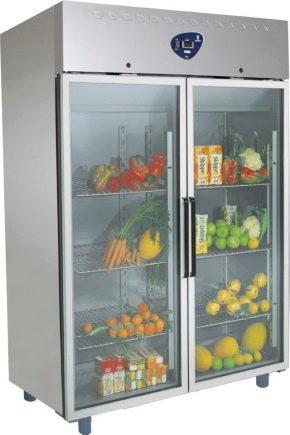 Wählen Sie einen Kühlschrank für Gemüse und Obst