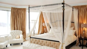 Bedroom design with a canopy