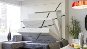 Transforming bed for the small-sized apartment