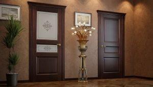 एक अल्सर के द्रव्यमान से दरवाजे: प्लस और minuses