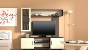 Mini-walls for the living room: features of choice