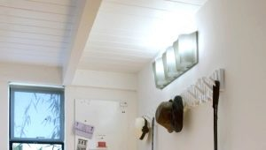 Wall lights for the hallway and corridor